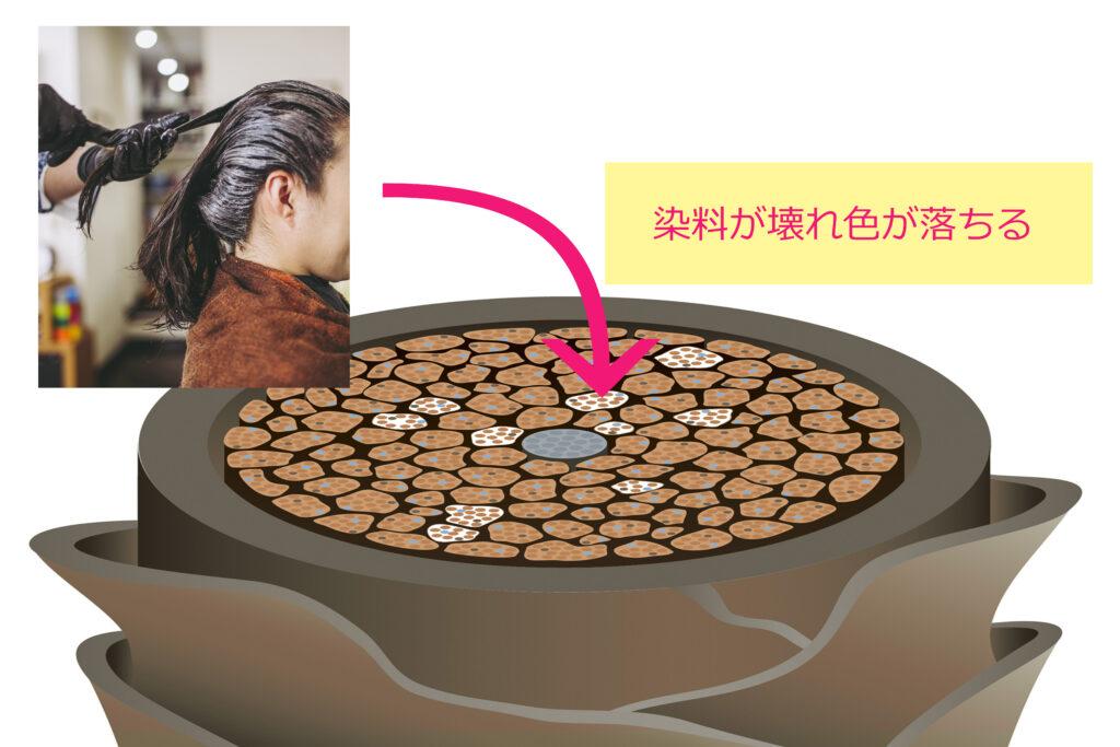 縮毛矯正1液でヘアカラーが色落する原理