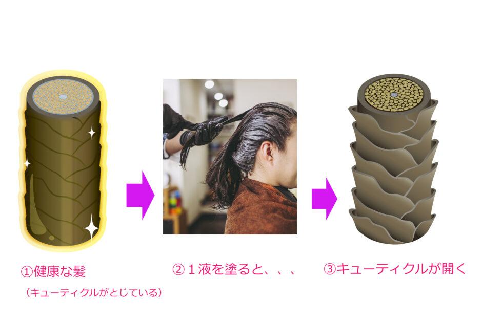 縮毛矯正でキューティクルが開く仕組み
